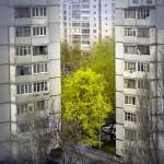 5 причин сделать наружное утепление квартиры весной